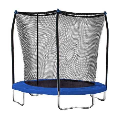 Skywalker Trampolines 8 Ft. Round Trampoline and Enclosure with Blue Spring Pad -