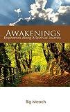 Awakenings 9780615451664