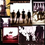 Hootie & The Blowfish - I'm goin' home