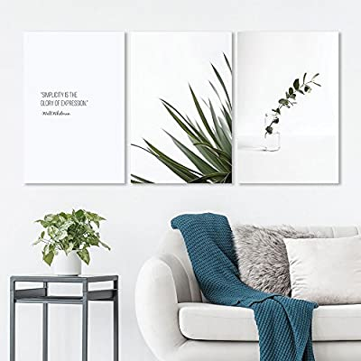 Alluring Artistry, Created Just For You, 3 Panel Minimalism Style Plants on White Background with The Simplicity Quotes x 3 Panels