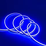 WYZworks Blue Flexible Water Resistant Soft Double Side LED Neon Rope Light Strip Bar 100FT
