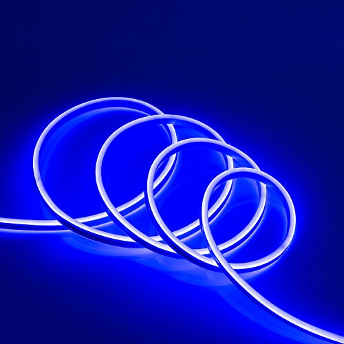 WYZworks Blue Flexible Water Resistant Soft Double Side LED Neon Rope Light Strip Bar 100FT by WYZworks