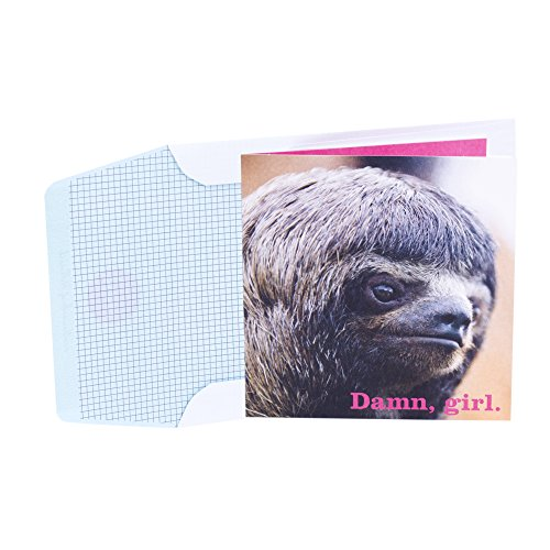Price comparison product image Hallmark Studio Ink Birthday Greeting Card for Her (Sloth Face,  Slow That Awesome Down)