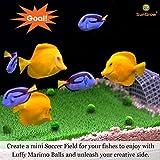 LUFFY Nano Moss Ball X 5+ 1 Free! Live Reef Aquarium Plant for saltwater coral brackish clown fish nemo