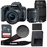 Canon EOS Rebel SL2 24.2 MP CMOS Digital SLR Camera with 3.0-Inch LCD with EF-S 18-55mm f/4-5.6 IS STM Lens and EF 75-300mm f/4-5.6 III Lens - Wi-Fi Enabled (Certified Refurbished)