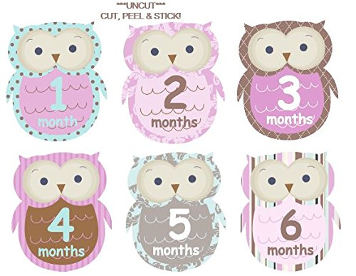 (Monthly Baby Girl Stickers Plaid Owls UNCUT Argyle Damask Stripes Dots Girl Owls)