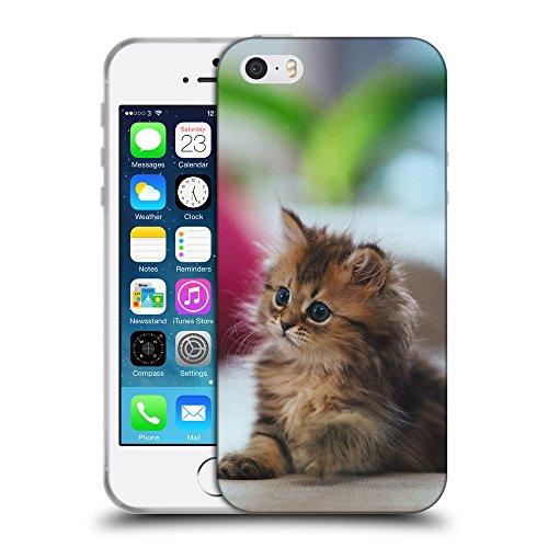 Just Phone Cases Coque de Protection TPU Silicone Case pour // V00004272 chaton aux yeux bleus pelucheux mignon // Apple iPhone 5 5S 5G SE