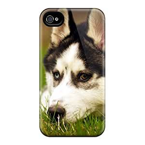 High Quality Husky Dog Resting Cases HTC One M8 Perfect Cases