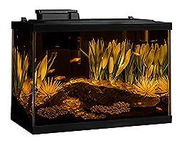Tetra ColorFusion 20 Gallon Aquarium Kit