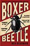 Boxer, Beetle, Ned Beauman, 1608196801
