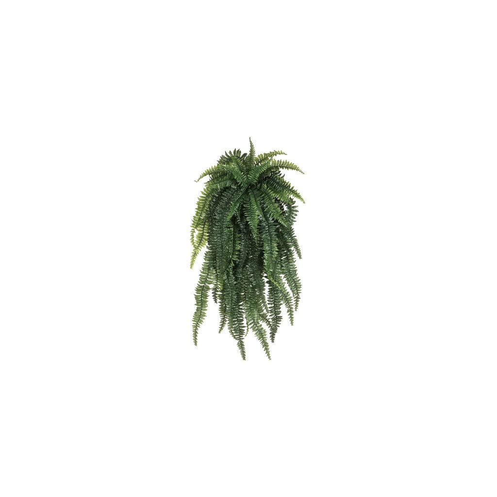52-Weeping-Boston-Fern-Silk-Hanging-Plant-55-Leaves-case-of-2