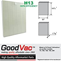 Oreck AirInstinct Air Purifier Replacement HEPA Filter for Models 75, 100, 108, 150 and 200 by GoodVac