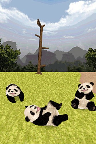 National Geographic: Panda - Nintendo DS