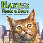 Baxter Needs a Home | Liam O' Donnell