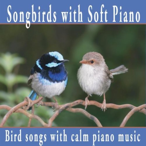 - Songbirds With Soft Piano: Nature Sounds, Bird Sounds With Relaxing Piano