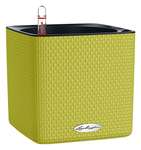 Lechuza 13585 Cube Color 16 Self-Watering Garden Planter, Lime Green