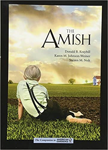amish social structure