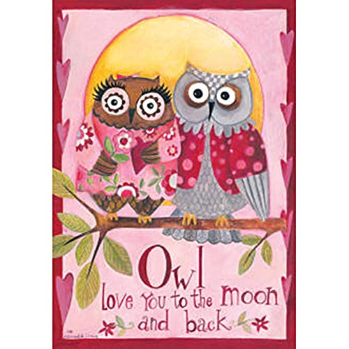 Owl Love You - Happy Valentines Day - Double Sided Standard Size Decorative Flag 28 X 40 Inches