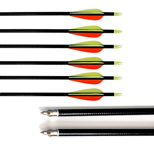 12 Pcs 32-inch Fiberglass Target Practice Arrows for Hunting Glass Fiber Shaft with Screw-in Arrow Tips