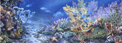 Andrews + Blaine Coral Reef Panoramic Puzzle, 1000-Piece