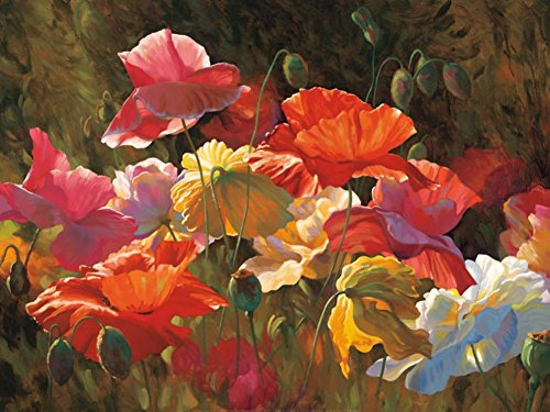 Poppies in Sunshine Art Print Floral Botanical Art Poster Print by Leon Roulette, 40×30