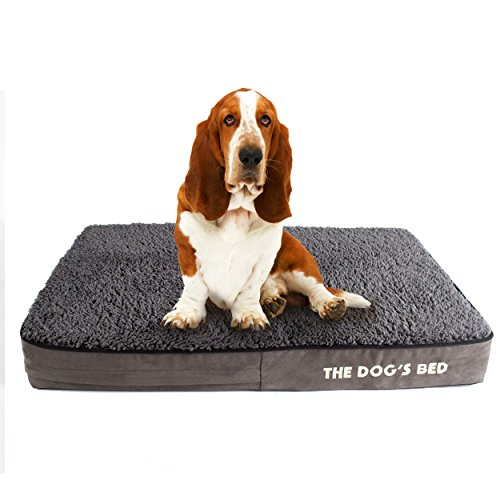 The Dog's Bed, Premium Plush Orthopedic Waterproof Memory Foam Dog Beds, 5 Sizes/7 Colors: Eases Pet Arthritis, Hip Dysplasia & Post Op Pain, Quality Therapeutic & Supportive Bed, Washable Covers (Bed Orthopedic Waterproof)