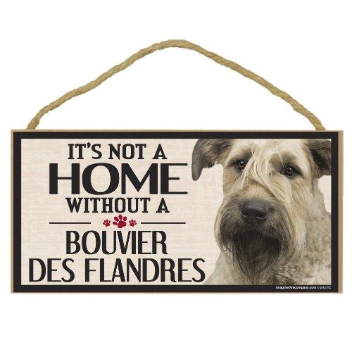 Imagine This Wood Sign for Bouvier Des Flandres Dog Breeds