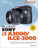 David Busch's Sony Alpha A3000/ILCE-3000 Guide to Digital Photography