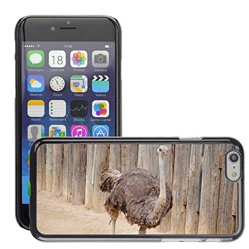 """Bild Hart Handy Schwarz Schutz Case Cover Schale Etui // M00133584 Ostrich Riesenvogel Riesen Big // Apple iPhone 6 PLUS 5.5"""""""