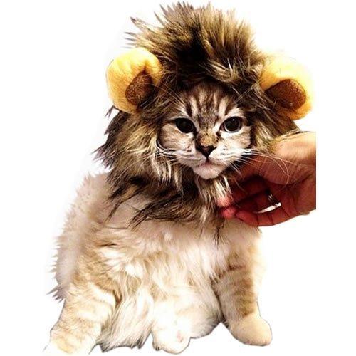 愛犬 愛猫用 ウィッグ 「ライオンのたてがみ (耳 付き)」MI-TATEGAMI