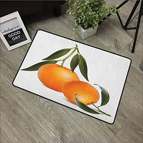Tangerine Stair Tread - Floor mat W35 x L47 INCH Green and Orange,Fresh Tangerine with Green Leaves Citrus Fruit Themed Illustration, Orange Olive Green Natural dye printing to protect your baby's skin Non-slip Door Mat Carp