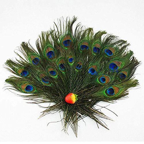 Making A Peacock Costume (Herebuy8 40pcs Real Natural Peacock Tail Eyes Feathers Perfect for Wedding Party Arts And Crafts Home Decorations DIY)
