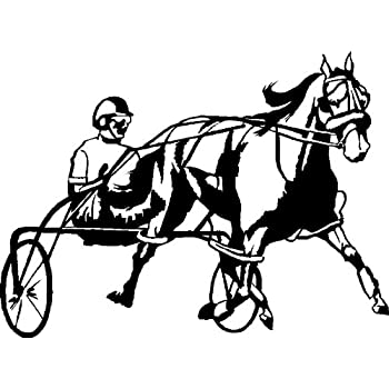 Amazon Com Harness Racing Horse Decal
