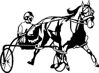 Amazon.com: Harness Racing Horse Decal - Outdoor Safe - Black - Left