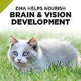 Purina Pro Plan Grain Free, Natural Pate Wet Kitten