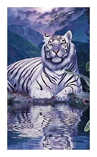Toalla de baño, toalla de playa, toalla - Tiger - Diseño: Blanco Tiger
