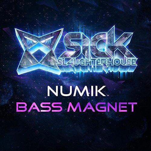Bass Magnet