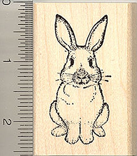 (Rabbit Rubber Stamp, Easter Bunny, or House)