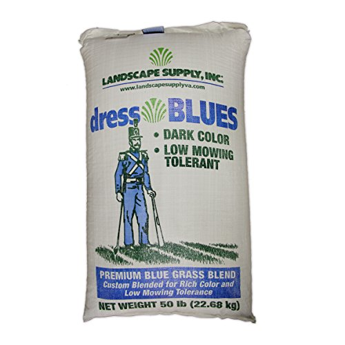 The Turf and Garden Store - Dress Blues Kentucky Bluegrass Blend, Blue Tag Certified, 50 Pounds by dressBLUES (Image #2)