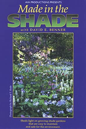 Made In The Shade With David E. Benner