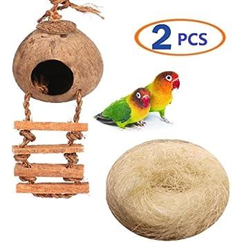 Amazon com : SunGrow Coconut Fiber, 1 5-Ounce, Comfortable