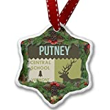 Christmas Ornament National US Forest Putney Central School Forest - Neonblond