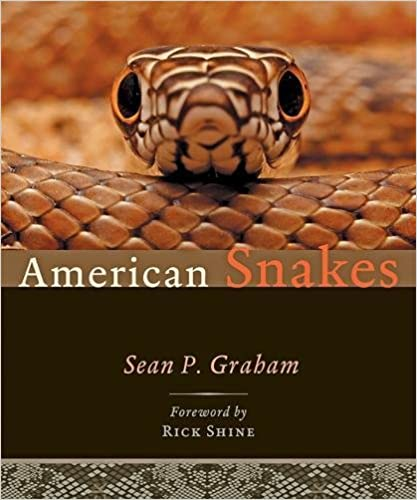 Amazon american snakes 9781421423593 sean p graham rick amazon american snakes 9781421423593 sean p graham rick shine books fandeluxe Image collections
