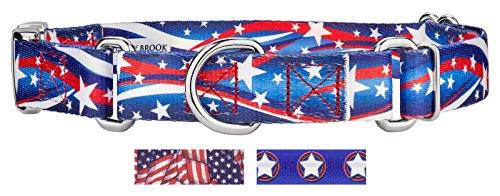 Country Brook Design | Star Spangled Martingale/Premium Buckle Dog Collar - - Collar White Martingale Dog