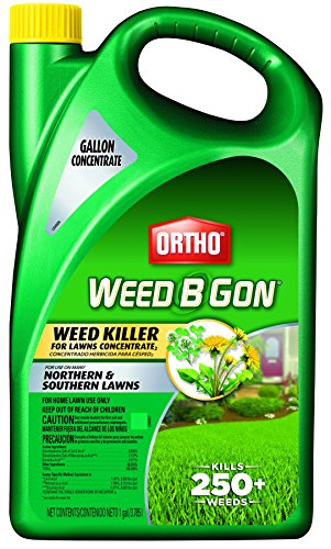 Ortho Ground Clear Vegetation Killer Concentrate (Case of...