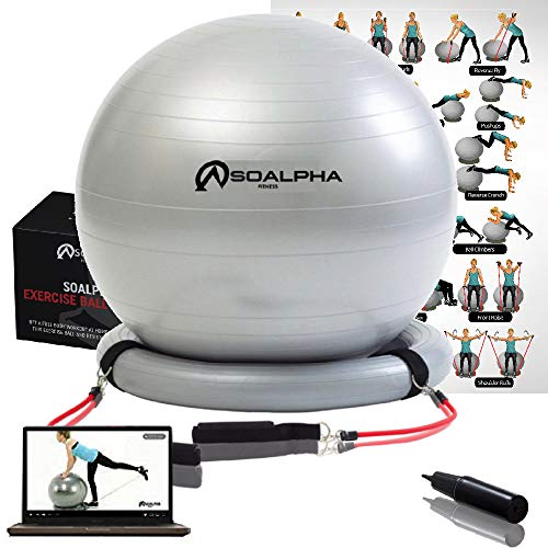 Soalpha Exercise Ball with 15LB Resistance Bands & Stability Base - Workout From Home with the Home Gym Bundle - Great For All Fitness Levels - 65CM Anti-Burst Yoga Ball - Watch Exercise Videos Online