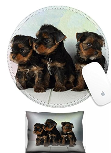 Luxlady Mouse Wrist Rest and Round Mousepad Set, 2pc IMAGE: 38745836 Three adorable puppy Yorkshire Terrier