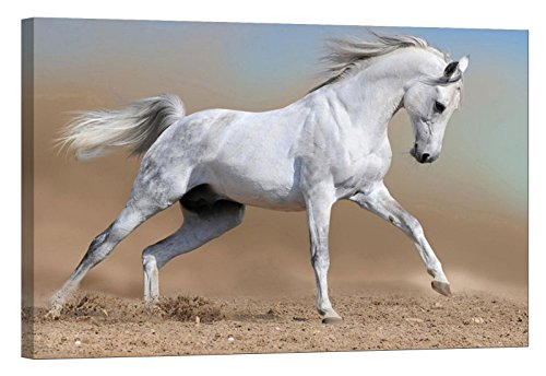 Arabian Horse Paintings - LightFairy Glow in The Dark Canvas Painting - Stretched and Framed Giclee Wall Art Print - Animals Nature Arabian Horse - Master Bedroom Living Room Decor - 6 Hours Glow - 46 x 32 inch