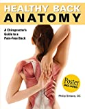 Healthy Back Anatomy (Anatomies of)
