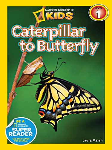 Nature Gift Store Live Butterfly Growing Kit: Shipped WITH 10 Live Caterpillars NOW, Pop-Up Cage, Book and Stickers BUNDLE by Nature Gift Store (Image #4)